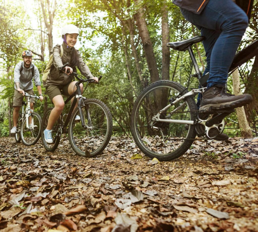 Camino de Santiago por Aragón en bici