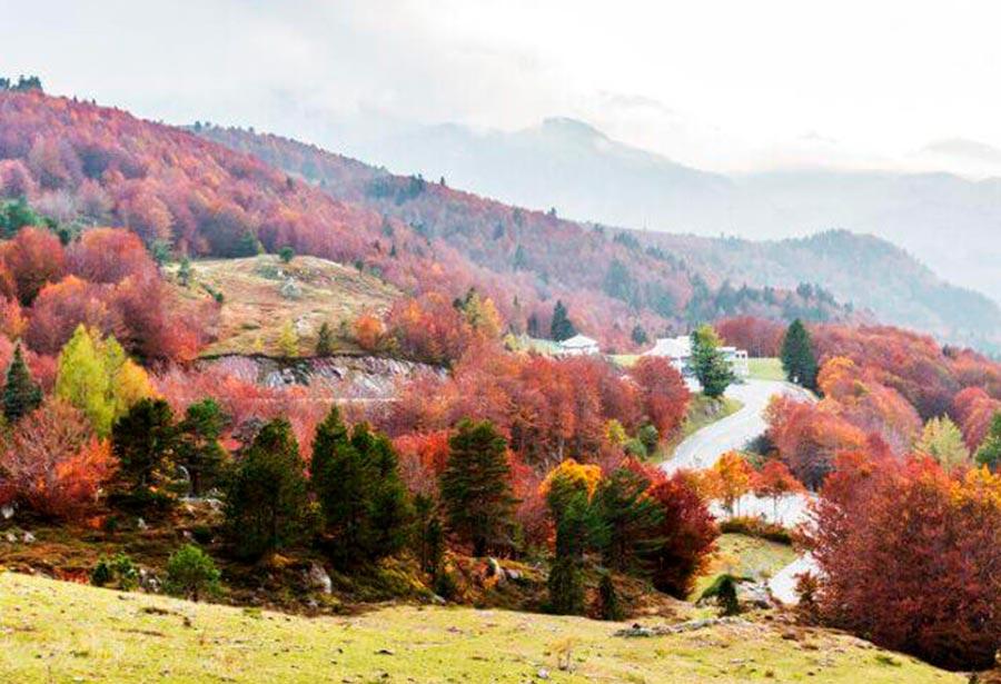 Camino de Santiago Francés por Aragón
